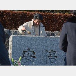 長門市にある安倍家の墓(C)日刊ゲンダイ