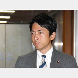 """政界の""""新""""風見鶏(C)日刊ゲンダイ"""