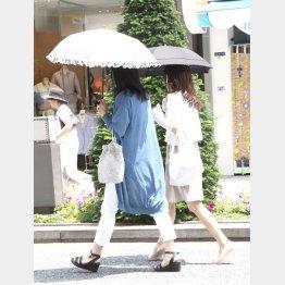 まだ暑さはつづく(C)日刊ゲンダイ