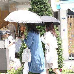 猛暑関連の台風の目に…「KHネオケム」驚愕の世界シェア