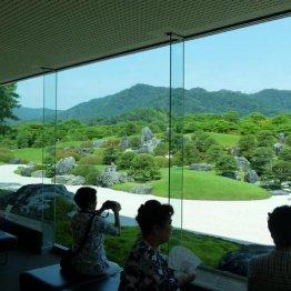 山陰で日本一の庭園と生クロマグロ、中国地方の最高峰を堪能