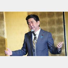 選対発足式で講演する安倍首相(C)日刊ゲンダイ