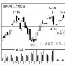 「昭和電工」世界トップシェアの黒鉛電極事業は成長性十分
