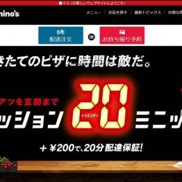 (ドミノ・ピザのウェブサイト)