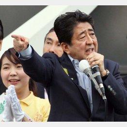 2017年都議選演説で「こんな人たち」発言(C)日刊ゲンダイ