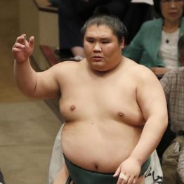 押し相撲が持ち味の大翔丸は特長らしい特長がないのが特徴