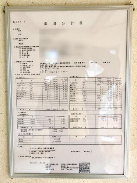 温泉分析書(提供写真)