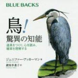「鳥!驚異の知能」ジェニファー・アッカーマン著 鍛原多惠子訳