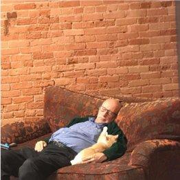 """人間嫌いの猫の警戒心も解く…米国""""猫おじさん""""の天賦の才"""