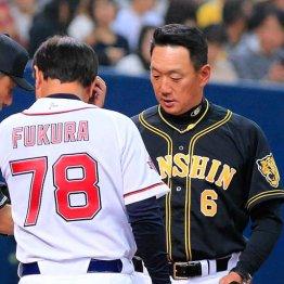 オリ福良監督は借金10で辞任…阪神・金本監督に強まる逆風