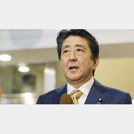 安倍首相はトランプのカモ(C)共同通信社
