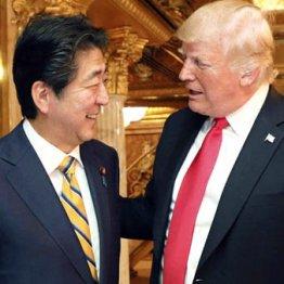 日本政府は朝鮮和平を妨害するだけの対北外交でいいのか