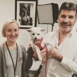 英国の大物音楽Pの寄付が話題 韓国の養犬場廃業に370万円