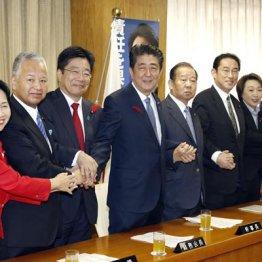 沖縄の乱は全国へ 亡国内閣改造で尽きた安倍内閣の命運