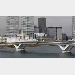 豊洲新市場と築地市場を結ぶ環状2号線、豊洲大橋(C)日刊ゲンダイ