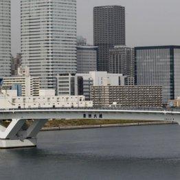 豊洲新市場と築地市場を結ぶ環状2号線、豊洲大橋