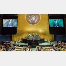 国際社会で限りなく存在感が薄い(ガラ空きの安倍首相の国連演説)/(C)共同通信社