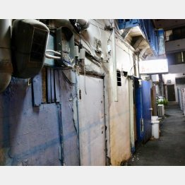 """建物の反対側は壁も屋根も""""全部、青い""""だった(C)日刊ゲンダイ"""