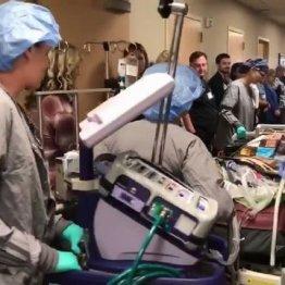 臓器ドナーを見送るセレモニー「敬意の歩道」に広がる共感