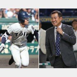 急浮上した大阪桐蔭の根尾(左)と原辰徳氏(C)日刊ゲンダイ
