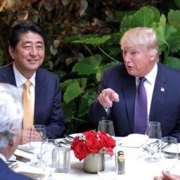 """安倍首相に""""カジノ疑惑"""" トランプが大口献金者の参入迫る"""