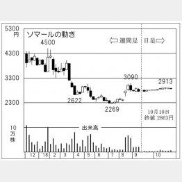 ソマール(C)日刊ゲンダイ