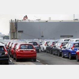 横浜港で輸出を待つ自動車(C)共同通信社