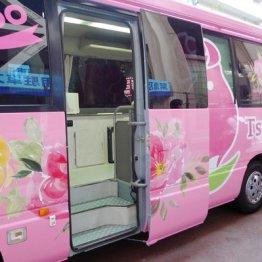 """夜の新宿や渋谷に出没""""ピンク色バス""""の正体を運営者に聞く"""