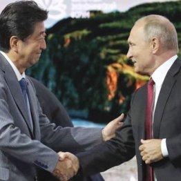 """安倍首相はプーチンの術中に…日ロ平和条約へ""""完落ち""""必至"""