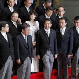 内閣支持率いずれも下落 貴乃花の立候補「応援しない」7割