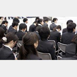 1日最大50万円の高額報酬でインターン募集も(C)日刊ゲンダイ