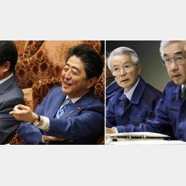 同じ穴のムジナ(写真右は、左から勝俣・武藤両被告)/(C)日刊ゲンダイ