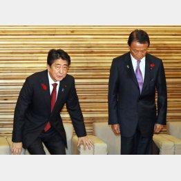 臨時閣議に臨む安倍首相(左)と麻生財務相/(C)共同通信社