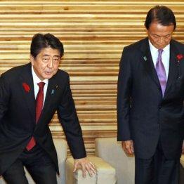 臨時閣議に臨む安倍首相(左)と麻生財務相