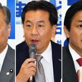 地方選の善戦が後押し 統一会派結成で野党の逆襲が始まる