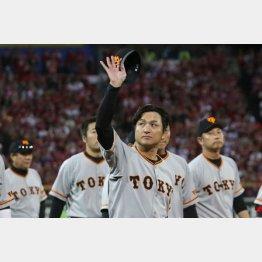 試合後、スタンドに手を振る由伸監督(C)日刊ゲンダイ