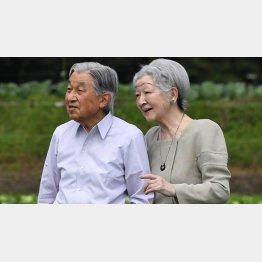 軽井沢で野菜畑を散策される天皇、皇后両陛下(代表撮影)
