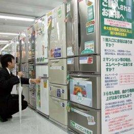 """大型冷蔵庫は2019年6月に""""型落ち""""狙い 家電の達人が指南"""