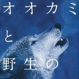 「オオカミと野生のイヌ」菊水健史監修 近藤雄生本文 澤井聖一企画・構成