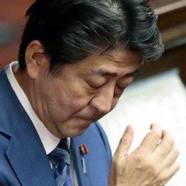 日米貿易交渉、北方領土、消費増税で追い込まれる安倍政権