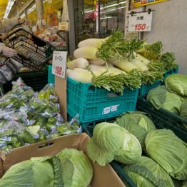農産物は価格高騰へ…民間の「種」の値段は公共品の4~10倍