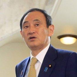 """通信ショックで株急落…海外勢からは""""社会主義""""のレッテル"""