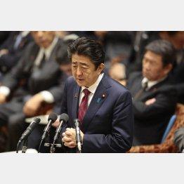 衆院予算委員会で答弁する安倍首相(C)日刊ゲンダイ