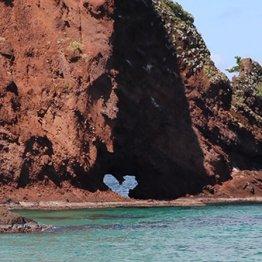 島根県隠岐諸島の明屋海岸に立つ屏風岩にも