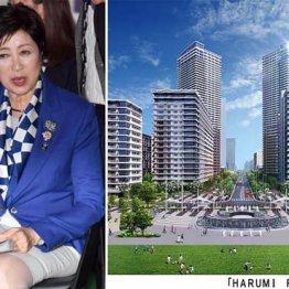 """立派な街を「高値」で=右、都民は数千億円の""""大損"""""""