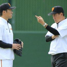 3度目の巨人監督に 正真正銘の「原野球」が見られるのか