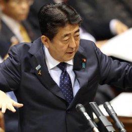庶民の懐直撃の10連休と消費増税 日本経済にトドメの恐れ