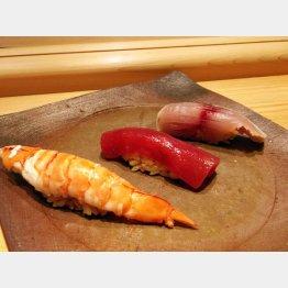 高級素材を使った足赤海老、鮪の漬け、鯖の握り(C)日刊ゲンダイ