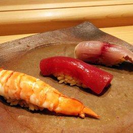 鮨よし田(和歌山・上富田)高級ネタ自慢の口熊野の寿司屋