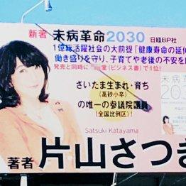 """片山大臣""""脱法看板""""にデマカセ答弁 出版社と説明食い違う"""